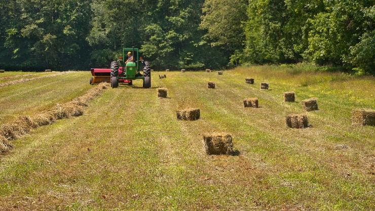 Komisja Europejska proponuje cięcia w budżecie na rolnictwo. Polska dostanie mniej na rozwój