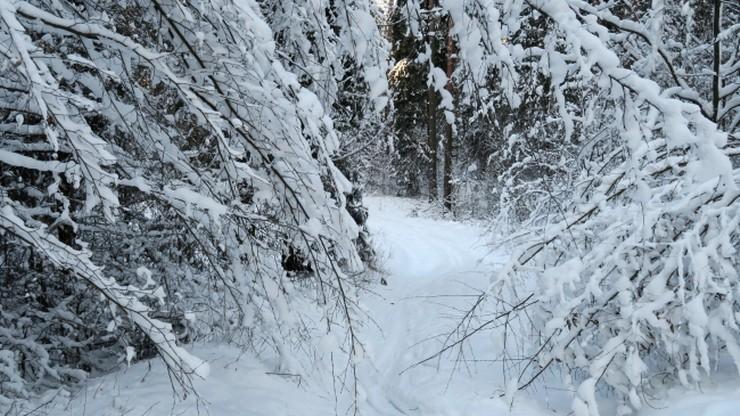 Zima nie odpuszcza. Ostrzeżenia przed silnym mrozem