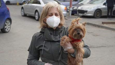 Czy w Polsce mieliśmy już szczyt pandemii? Najnowsze dane na temat koronawirusa