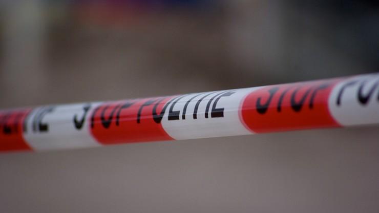 Ciało Polaka znalezione na farmie w Irlandii. Śledczy: to podejrzana śmierć