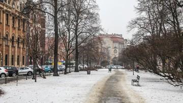 W Krakowie będzie skwer Praw Kobiet. Powstanie obok siedziby PiS