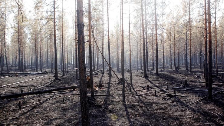 KE dziękuje krajom UE za pomoc w walce z pożarami w Szwecji
