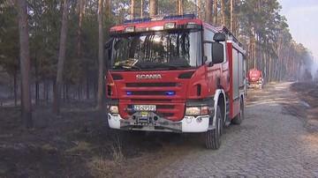 """Pożary lasów w kilku województwach. """"Sytuacja katastrofalna"""" prawie w całej Polsce"""