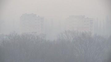 Kazania o czystym powietrzu w kościołach? Marszałek Struzik zachęca biskupa