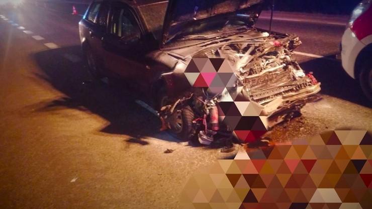 Auto zderzyło się ze stadem dzików. Żadne zwierzę nie przeżyło