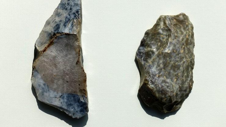 Mazowieckie. Archeolodzy odkryli ślady obecności neandertalczyka w Iłży