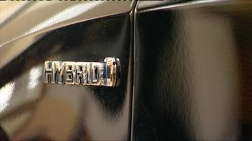 Polacy polubili jazdę hybrydami. Popularność jeszcze wzrośnie wraz ze spadkiem akcyzy