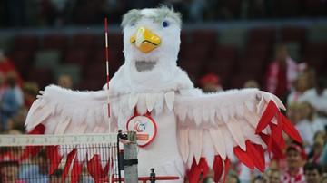 Wielki sport w Polsce. Prezentacja kandydatów na imprezę roku
