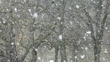 Intensywne opady śniegu na Dolnym Śląsku. Ostrzeżenie IMGW