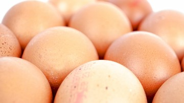 Belgia: minister chce ukarania winnych skandalu ze skażonymi jajami
