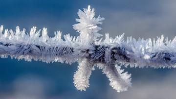 Rekordowe zimno na północy Włoch. Ponad 40 stopni mrozu