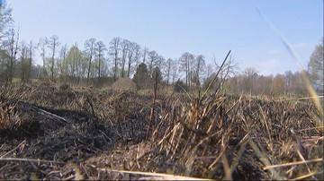 68-latek zginął podczas gaszenia pożaru traw pod Kaliszem