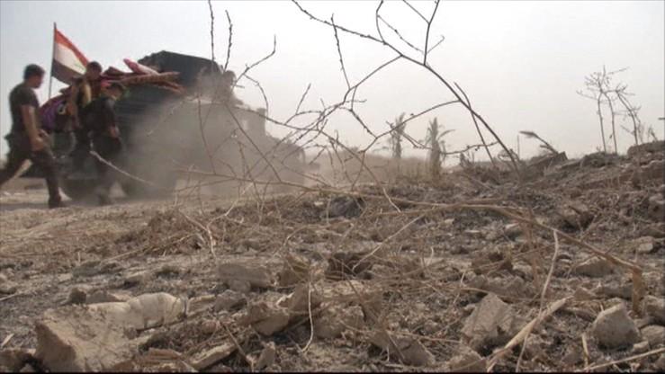 Pod Faludżą odkryto zbiorowy grób z ciałami ponad 400 osób