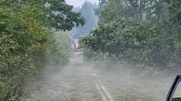 Nawałnice na Mazowszu. Powalone drzewa i zalane posesje
