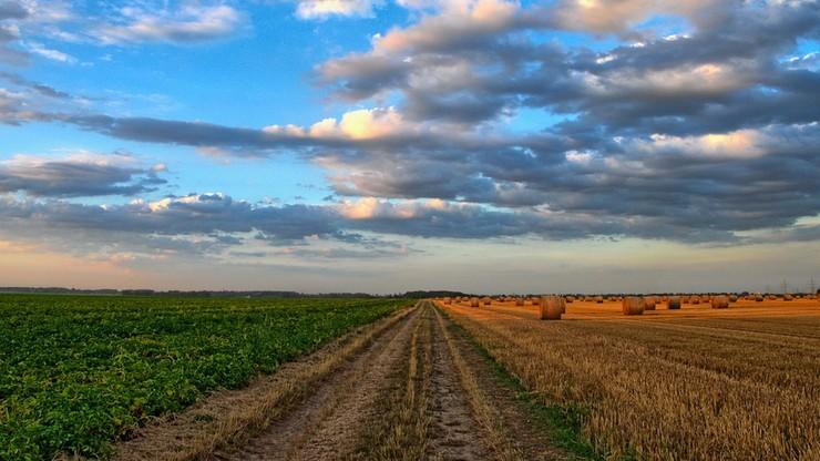 Powołano 2,5 tys. komisji ds. szacowania szkód w rolnictwie. Pracę skończyły nieliczne