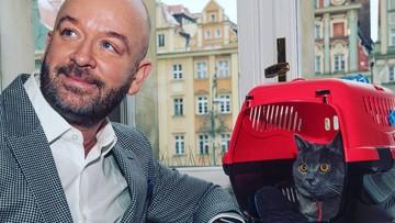W gabinecie prezydenta Wrocławia zamieszkał kot Wrocek. Kilka dni temu porzucono go na dworcu