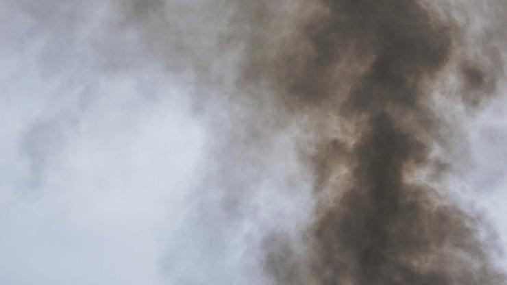 USA. Najnowsze badania: dym z pożarów zwiększa ryzyko zakażenia koronawirusem
