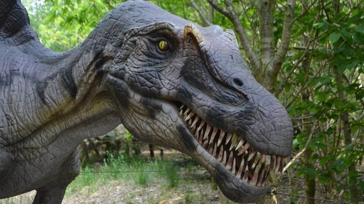 Jak wyginęły dinozaury? Naukowcy mają nową teorię