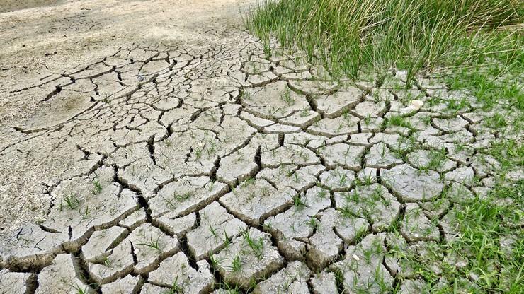 Europejczycy uważają zmianę klimatu za najpoważniejszy problem, przed którym stoi świat