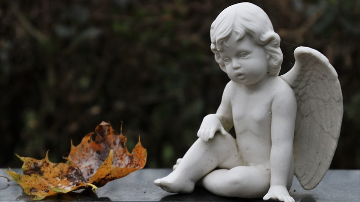 Belgia: spacer po płytach nagrobnych - cmentarz w Brukseli zamieniony na park