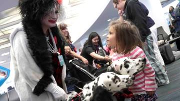 """Politycy PiS chcą """"zablokować"""" organizację Halloween w szkołach. """"Nie można dzieciom fundować takiego horroru"""""""