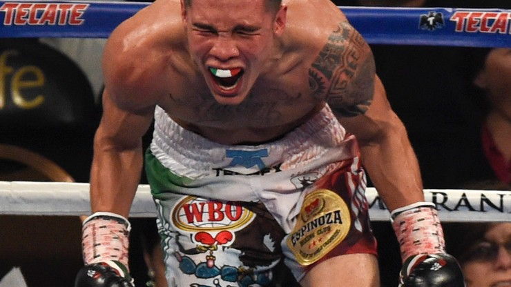 Z narożnika PG: Mistrz je za darmo, a mistrzyni boksu chce podbić oktagon