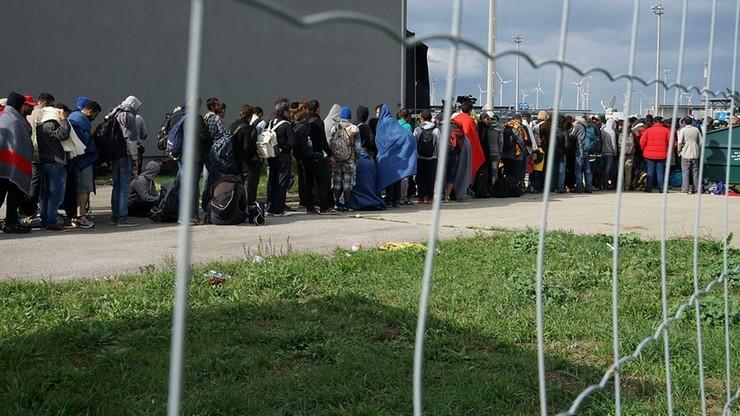 """Wzrost przestępczości wśród imigrantów z Afryki w Niemczech. Ekspert wskazał powód: """"brak obecności kobiet"""""""