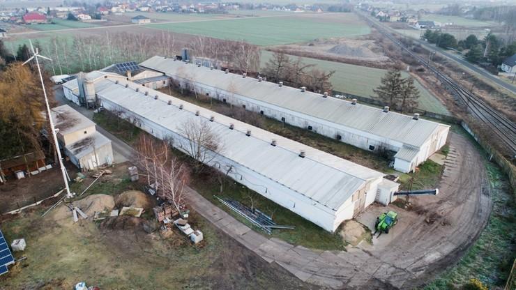 Wielkopolskie: osadzeni pracują przy utylizacji zagazowanych kur