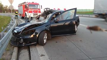 Samochód osobowy zderzył się z łosiem na trasie S8. Dwoje rannych, zwierzę nie przeżyło