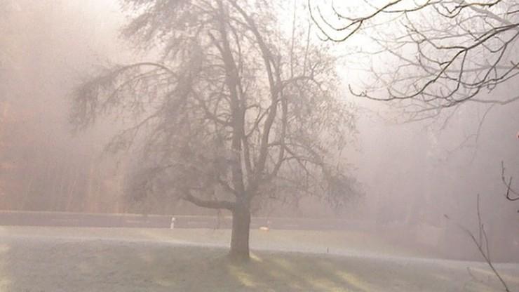 Pochmurno, miejscami przelotne opady śniegu i mróz. Prognoza na poniedziałek 8 marca