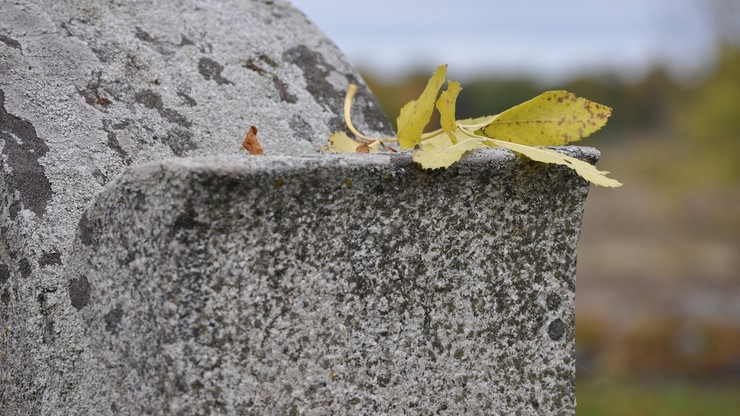 Sprofanowano grób znanej aktorki. Ktoś odsunął płytę nagrobną