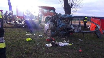 Samochód zderzył się z dzikiem, potem uderzył w drzewo. Nie żyje kobieta i miesięczne dziecko