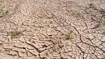 """""""Dopóki nie zabraknie wody w kranach, nie zauważymy, że grozi nam susza"""""""