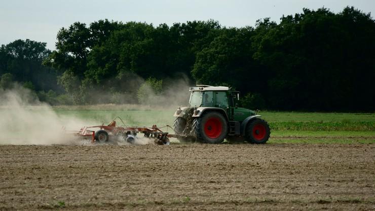 Prezes Agencji Rynku Rolnego odwołany na wniosek ministra rolnictwa