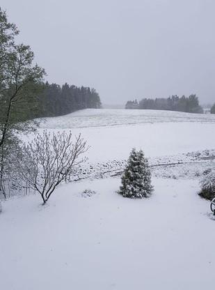 Polski biegun zimna, około 10 km od granicy z Litwą