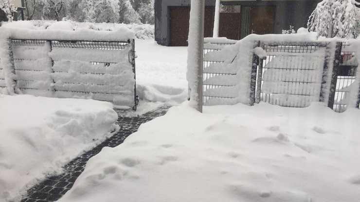 Śnieg po kolana w Częstochowie