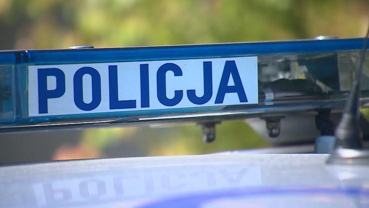 Zderzenie dwóch autobusów PKS-u w Lubuskiem. Poszkodowanych zostało pięć osób