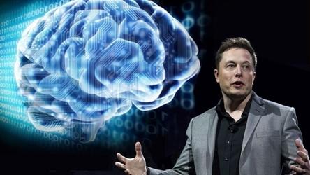 """Elon Musk podłączył małpę do interfejsu mózg-komputer. """"Teraz to szczęśliwa małpa"""""""