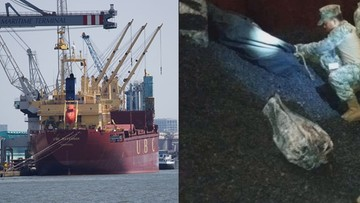 Polski kapitan uwięziony w Meksyku za nieumyślny przemyt kokainy. Nie dostaje potrzebnych mu leków