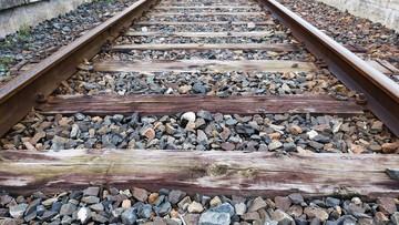 Rakotwórcze podkłady kolejowe trafiają do domowych pieców i ogrodów. Miały być utylizowane