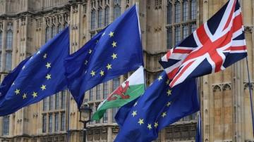 Nadzwyczajny szczyt ws. brexitu. Unijni przywódcy zadecydują, czy W. Brytania dostanie więcej czasu