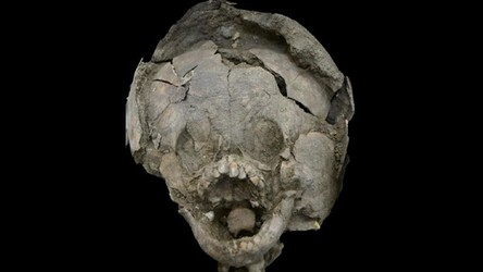 Archeolodzy są w szoku. Odkryli dzieci pochowane w czaszkach… innych dzieci!