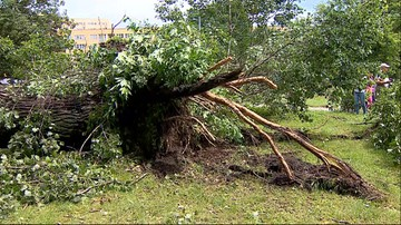 Zerwane dachy, połamane drzewa. Sześć osób rannych po przejściu nawałnic nad Polską