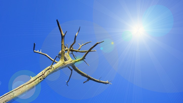 Rekordy ciepła. Tegoroczny lipiec najgorętszym miesiącem w historii pomiarów