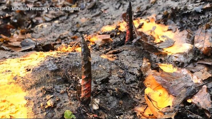 Niebezpieczna pułapka w lesie. Biegacze przebili sobie stopy metalowymi prętami