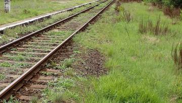 Linie kolejowe pokryte asfaltem? Województwo myśli o rewolucji w transporcie