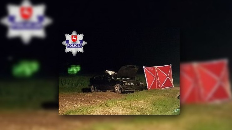 BMW uderzyło w łosia. Nie żyje 19-letni kierowca. Zwierzę także nie przeżyło