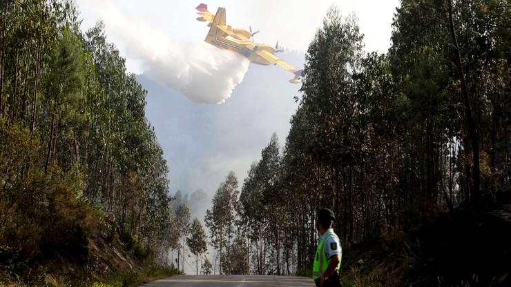 Media: samolot rozbił się podczas gaszenia pożaru w Portugalii