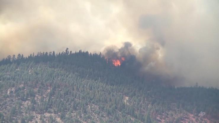 Rekordowe upały i gigantyczne pożary pustoszą Kalifornię