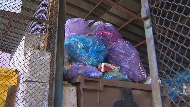 Spółka przestała wywozić śmieci.Każdego dnia przybywa 30 ton odpadów